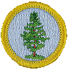 badge Foresty Badge